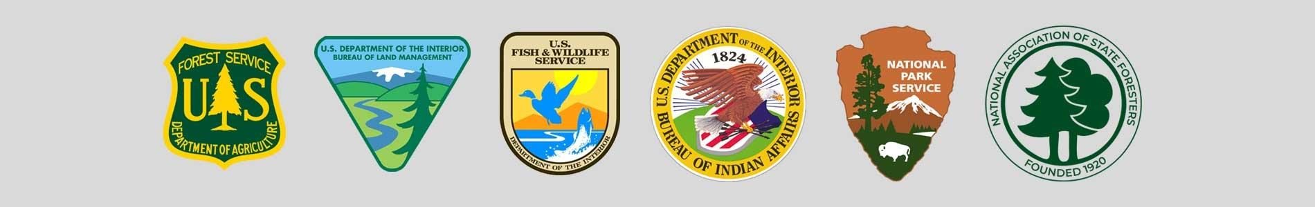 Steering Committees Logos